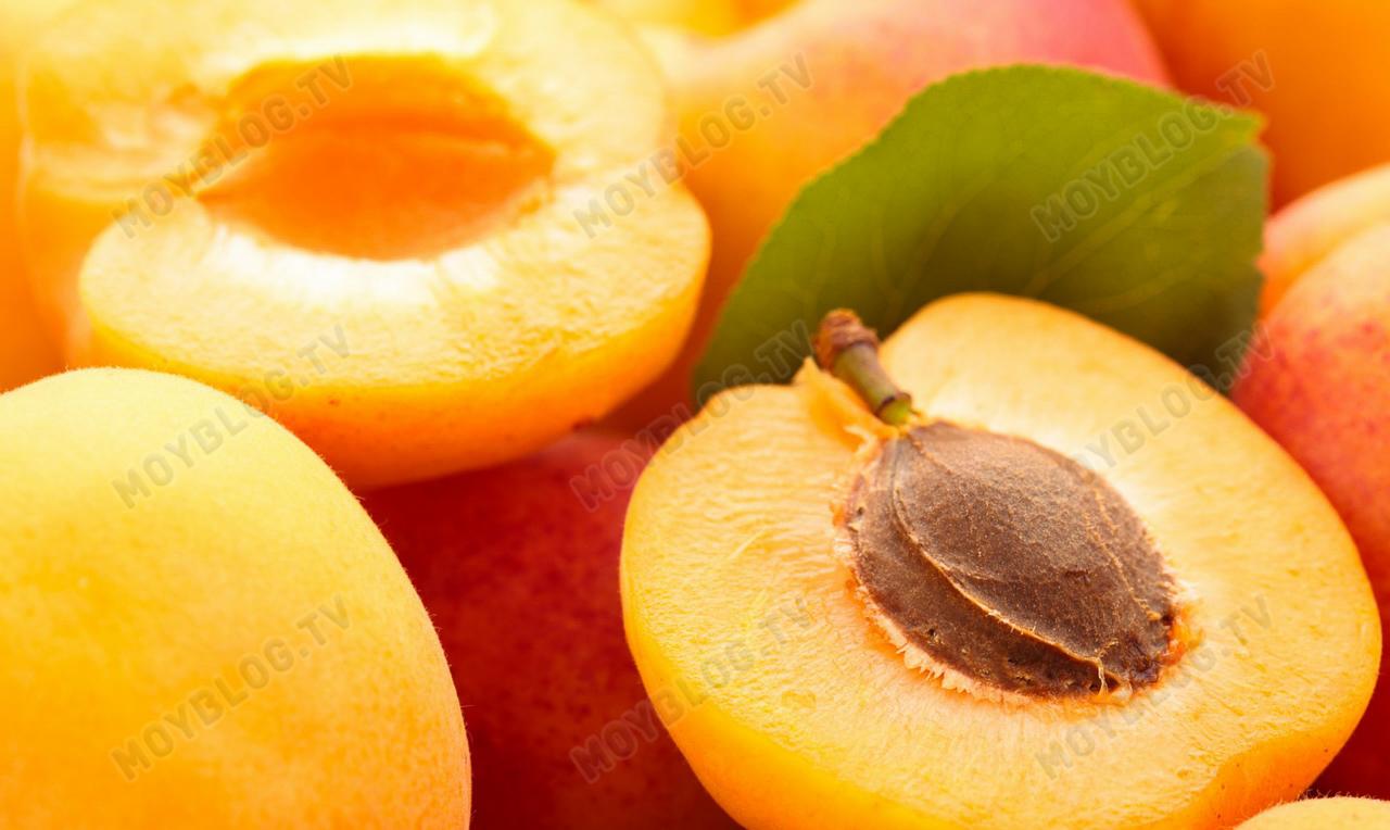 Сорта-абрикосов-9
