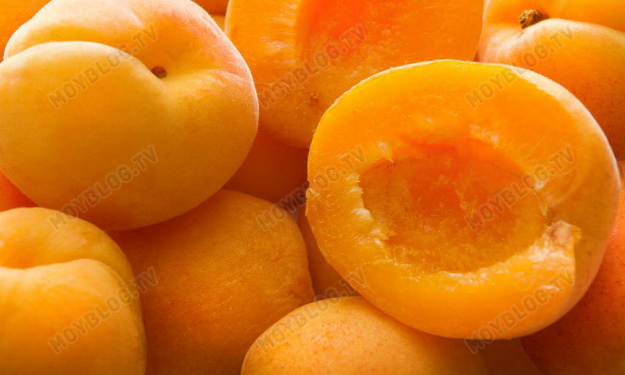 abricot-1000x600